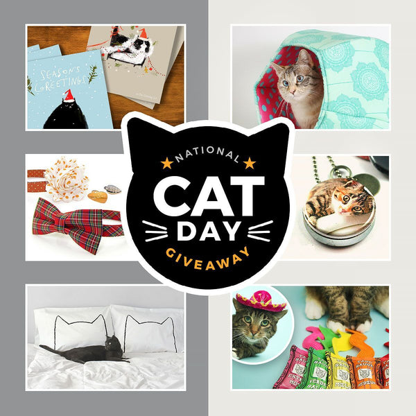 national cat day giveaway through november 4th, 2016