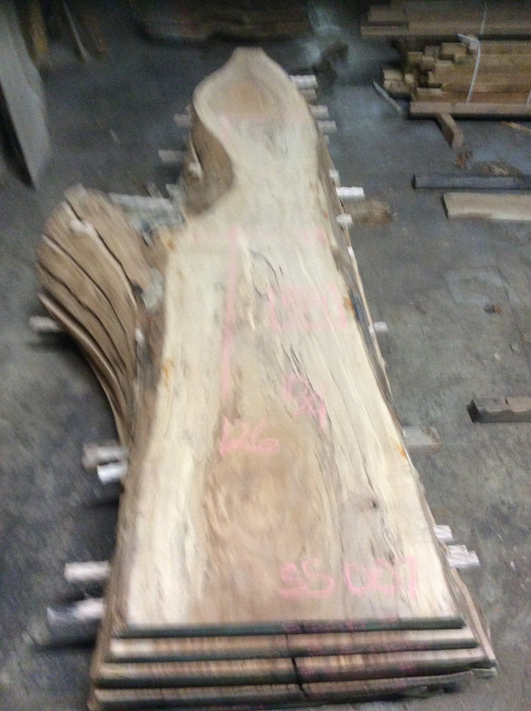 Spalted Sycamore Slab