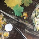 Edible Leaves and Feathers for Autumn