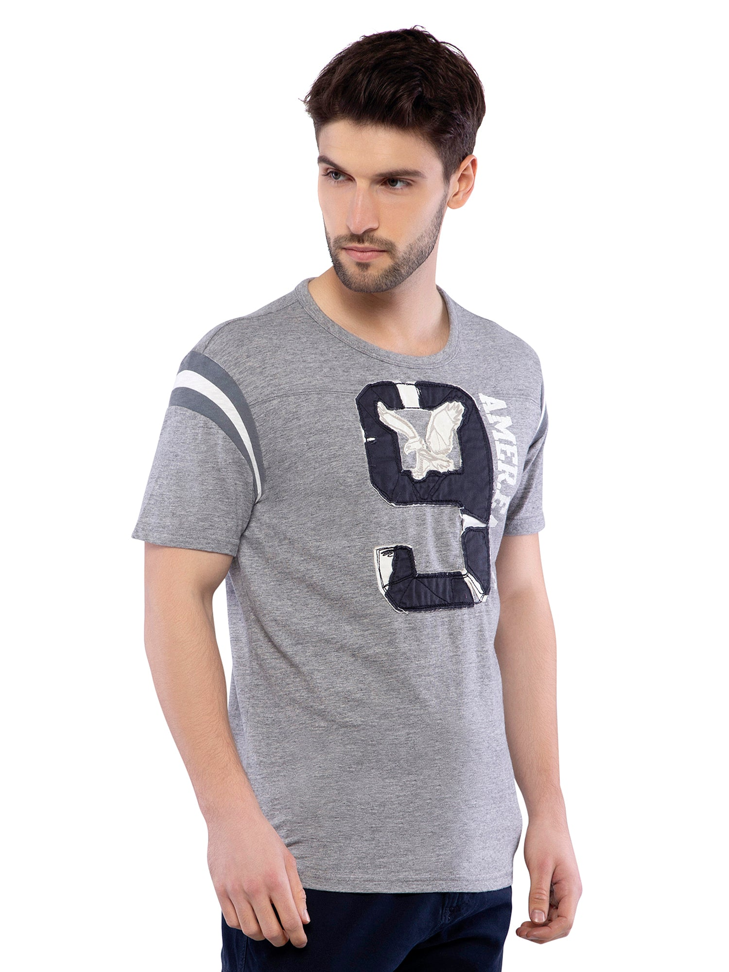 American Eagle Men Grey Applique Crew Neck T-Shirt