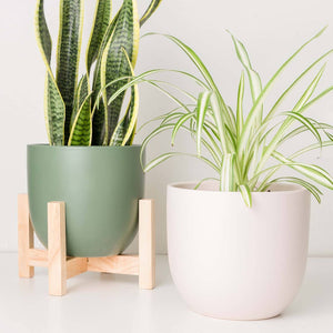 "Contour 12"" Ceramic Planter - Forest Green"