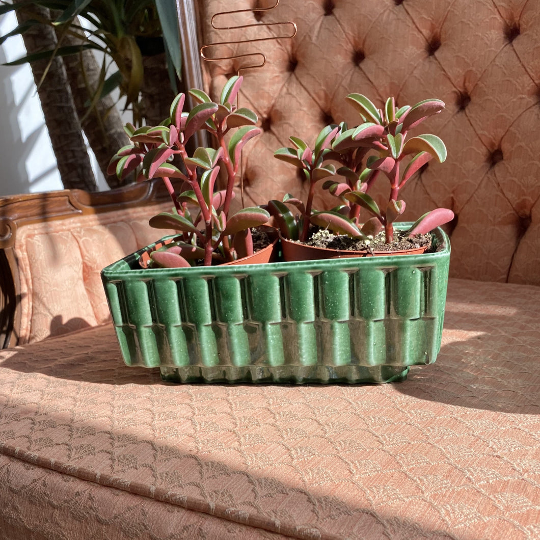 Vintage Green Ceramic Ripple Planter