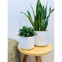 Load image into Gallery viewer, White 'Exhale' Ceramic Planter - 6 inch