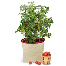 Load image into Gallery viewer, Harvest Growing Bags™ - Tomato