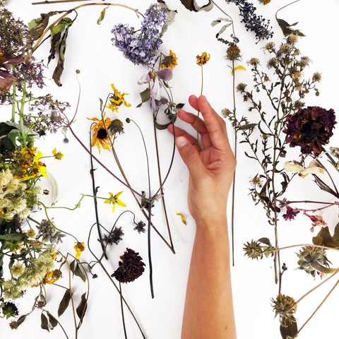 Photo with hand with dried flowers by artist CreativeIngrid | Ingrid Sanchez. London 2018.