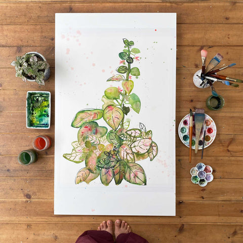 Plant portrait painting of a Pink Polka Dot using a light pink, different shades of greens and playful leafy shapes with black ink.  Ingrid Sanchez, CreativeIngrid 2021.