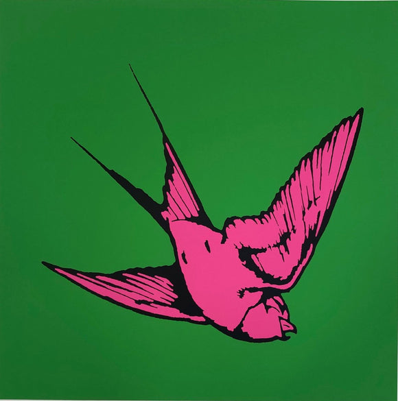 Dan Baldwin Artist Silkscreen print of pink Hummingbird on green background