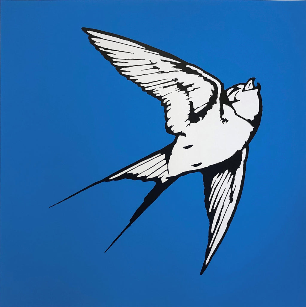 Dan Baldwin limited edition print of Pale Grey Hummingbird on a Light Blue background