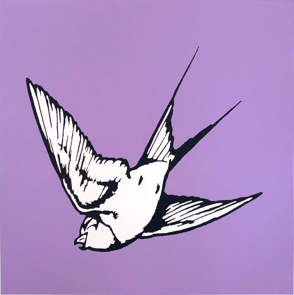 Dan Baldwin limited edition print of Blush Pink Hummingbird on a Lilac background
