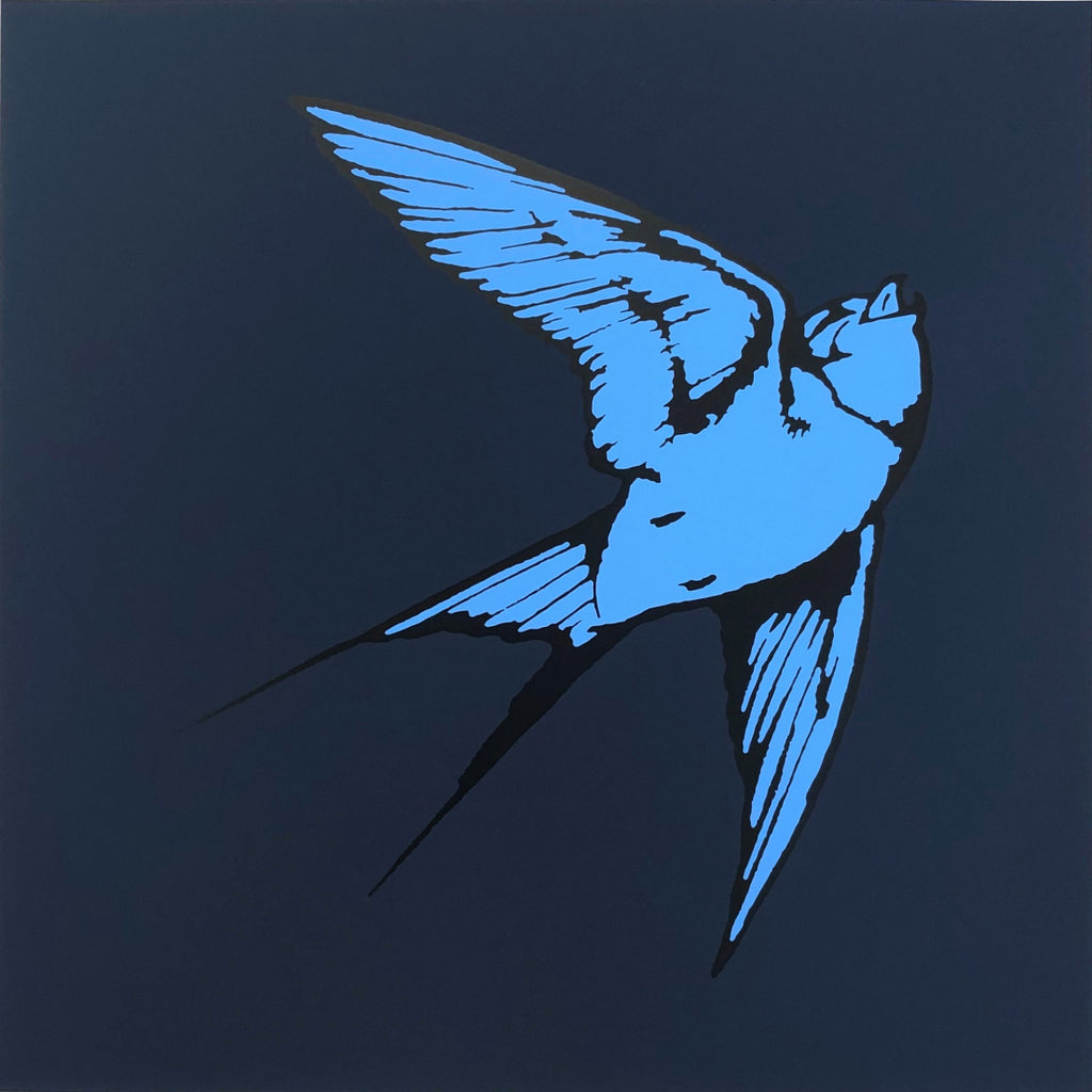 Dan Baldwin limited edition print of Blue Hummingbird and dark blue background