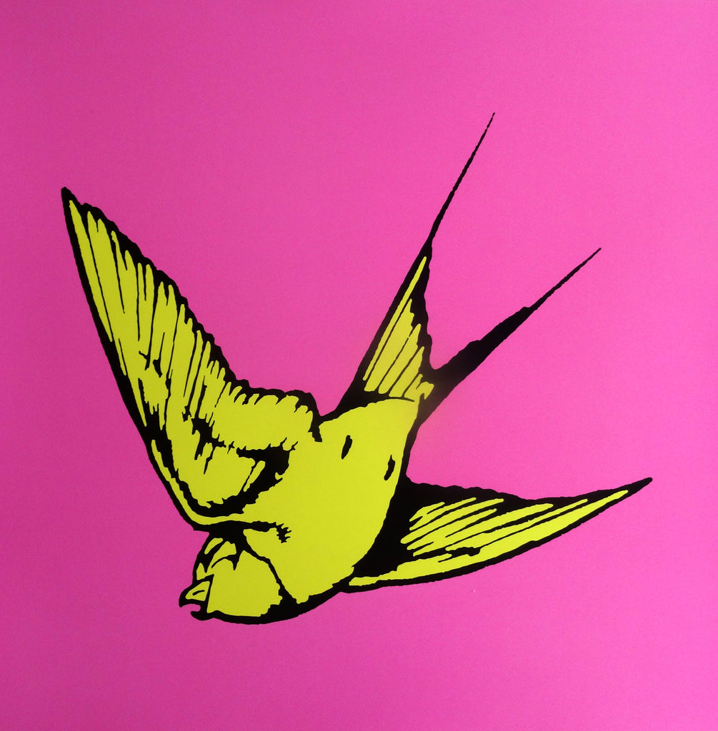 Dan Baldwin limited edition print of Yellow Hummingbird and bright pink background