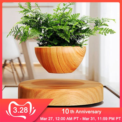 Floating Flower Pot by SIA