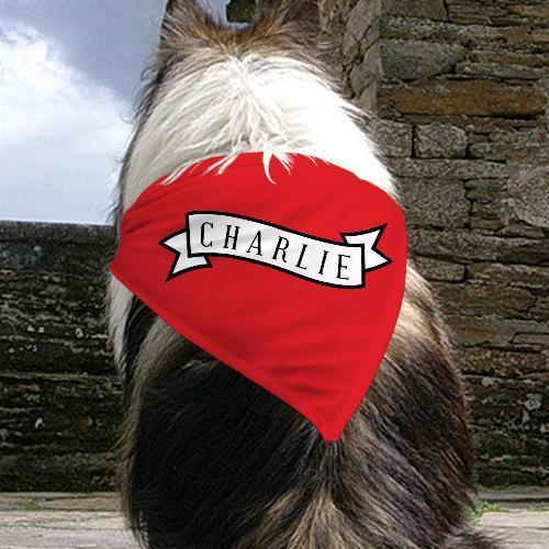 Personalized Banner Pet Bandana-Personalized Gifts