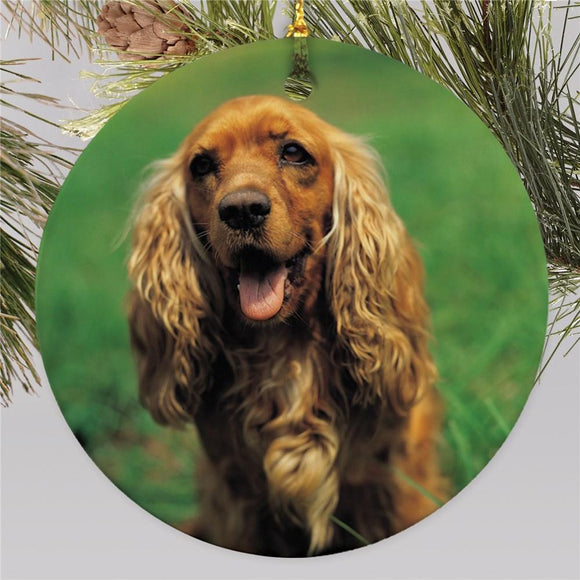 Picture Perfect Pet Photo Ornament-Personalized Gifts
