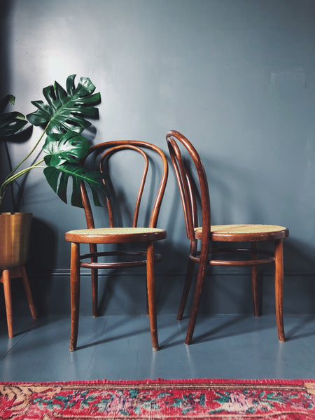 Vintage Thonet Style Bentwood Bistro Chairs - Vintage Thonet Style Bentwood Bistro Chairs – Homeplace