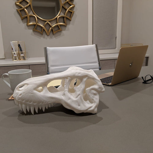 Large T-rex Skull || High Quality 3D Print - Casual Chicken
