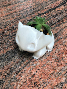 Adorable Bulbasaur Succulent Planter - 3D Printed - Made in Canada