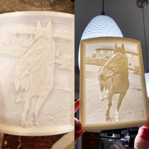 Lithophane Photo - Custom 3D Printed Image - Made in Canada