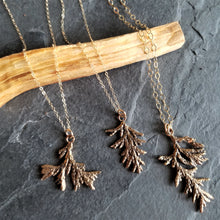 Load image into Gallery viewer, Evergreen Sprig Necklace