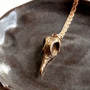 Greater Coucal Skull Necklace