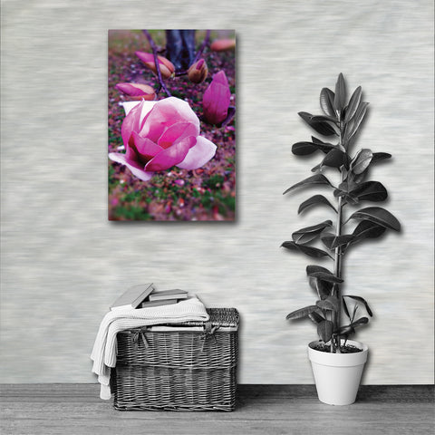 BLOOM MAGENTA Photo Canvas Print 12x12 to 24x36