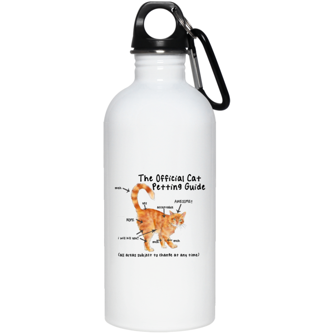 Cat Petting Guide Stainless Steel Water Bottle