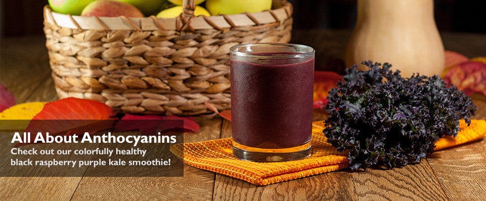 Black Raspberry Purple Kale Smoothie