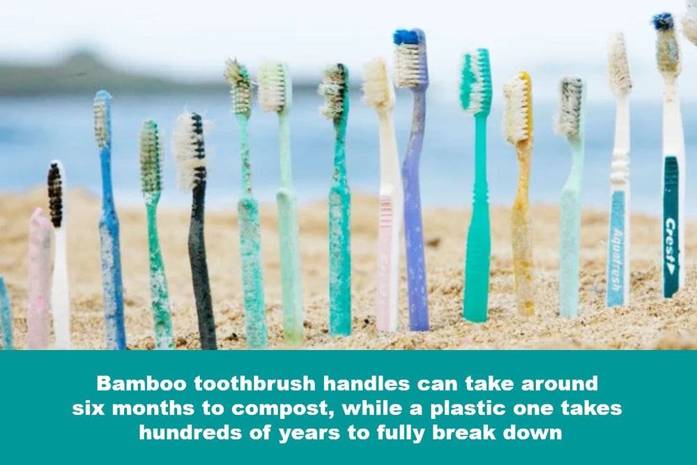 La-boos Bamboo Toothbrush (for Adult)