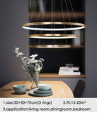 Rings Led Pendant Light - Your Chandelier