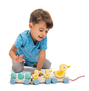 You added Tender Leaf Toys Pull Along Ducks to your cart.