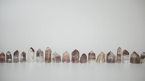 plum noir lodolite points