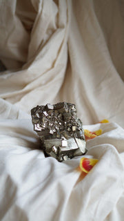 gold pyrite