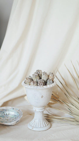 white sage loose incense