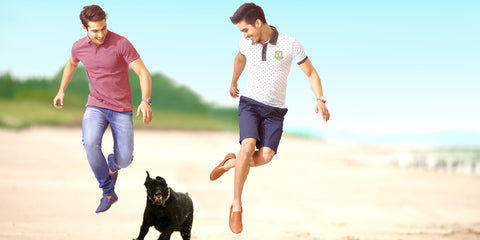 Best Polo T-shirts to buy in Amazon, Flipkart and Myntra