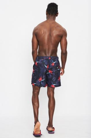 Toronto Swim Short _ 114885 _ Multi