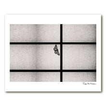 Load image into Gallery viewer, Dozen Editions № 6: Moth on Shoji Screen