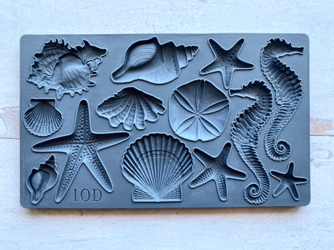 Sea Shell Decor Moulds - IOD
