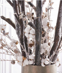 snowy acorns arrangement