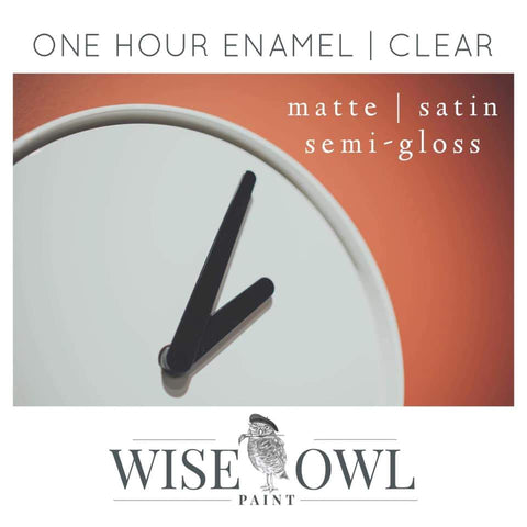 One Hour Enamel Clear - Wise Owl Paint