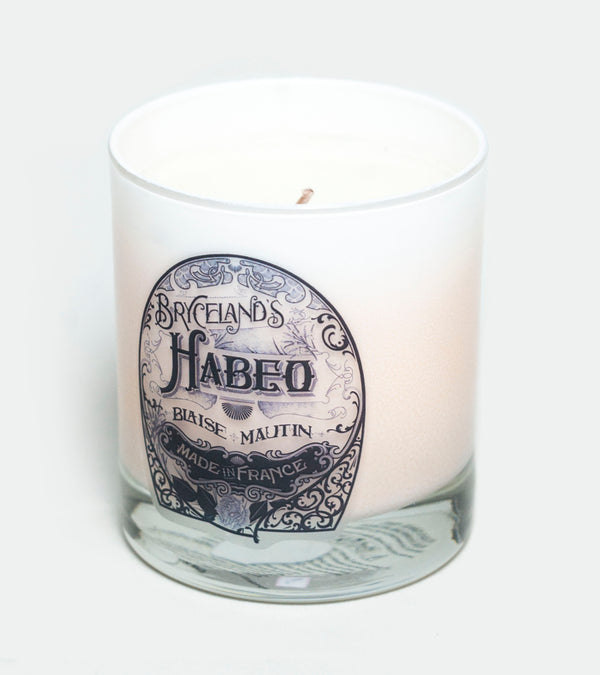 Bryceland's 'Habeo' Candle