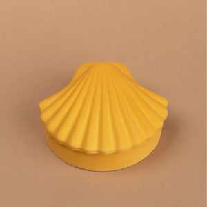 Honey Seashell Box