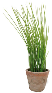 Rustic Terracotta Plant Pot | Faux Chives