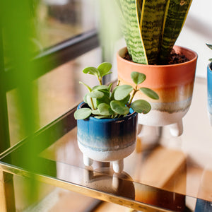 Ceramic Mini Planter | Blue