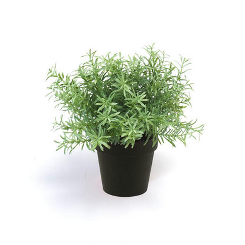 Artificial Rosemary Bush In Black Pot