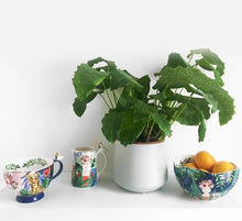 Load image into Gallery viewer, Tropical Frida Kahlo Cup