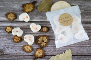 Sea Salt & Ginger Lily Eco-friendly Coconut-Rapeseed Wax Melts