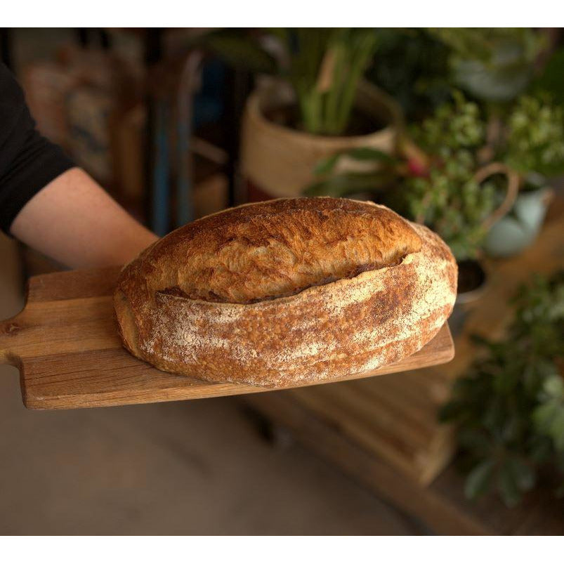 White Sourdough Loaf Bread Bakehouse