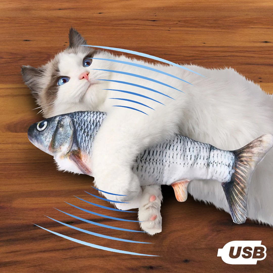 Interactive Cat Fish Toy