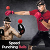 Speed Punching Balls