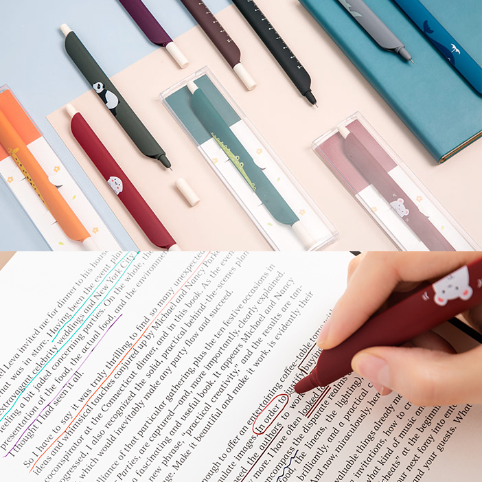 Bookmark Pen and Ruler
